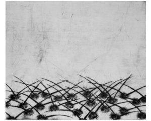 Kaktusy III · suchá jehla · 25 x 30 cm 2008