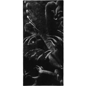 Kaktus III · mezzotinta · 20 x 9 cm 2009