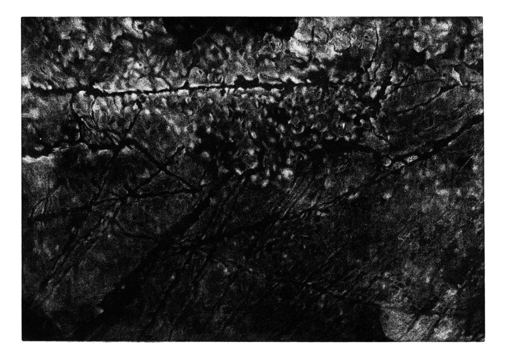 Kámen Albánie · mezzotinta · 35 x 50 cm 2009