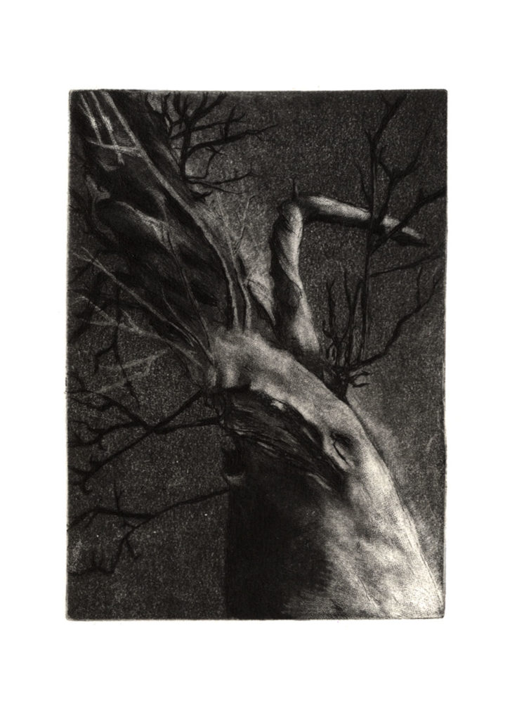 Strom · hlubotisk · 11 x 8 cm 2011