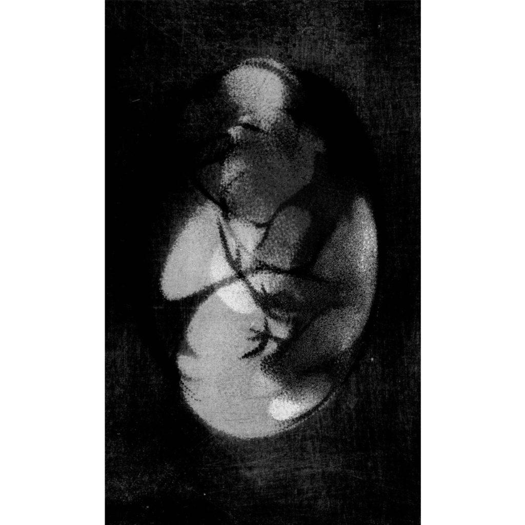 Prolínající se III · digitální tisk · 100 x 70 cm 2016