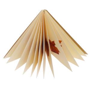 Origami formičky