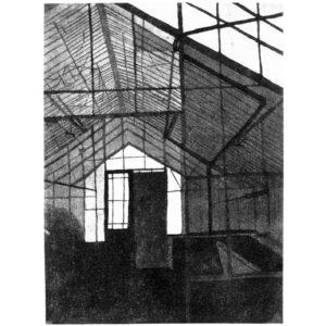 Greenhause I · aquatint · 42 x 30 cm 2007