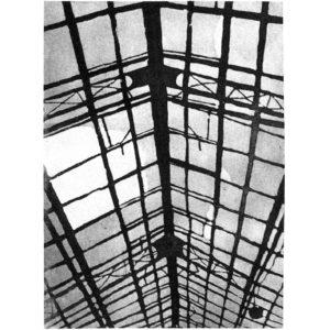 Greenhause II · aquatint · 42 x 30 cm 2007