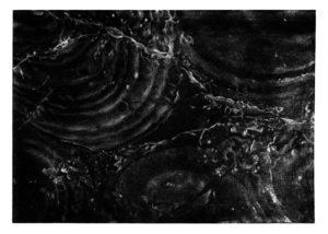 Stone Montenegro · mezzotint · 35 x 50 cm 2009