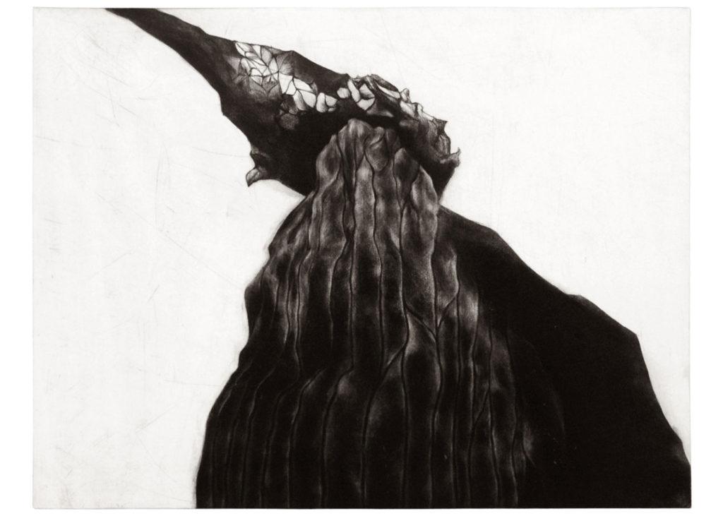 Petal · gravure · 40 x 50 cm 2015