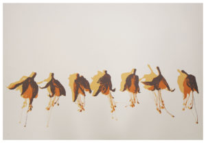 Dance I · serigraphy · 80 x 120 cm 2015
