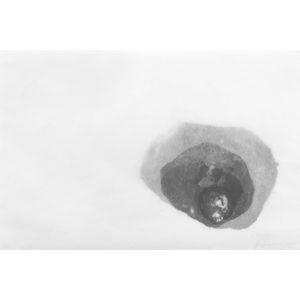 grafický cyklus Malé světy · litografie · 24 x 30 cm 2017